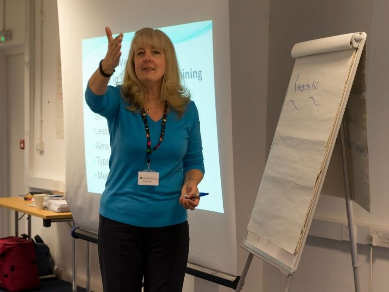 TEA Newbie Teacher Success Path